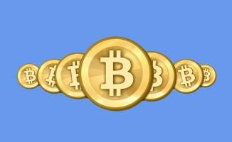 Bitcoin 7.333 dolara rekor kırdı. 1 BTC 30 bin TL oldu
